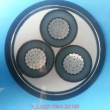 供应陕西电线电缆-铝芯铠装电缆 --YJLV22  陕西铝芯电缆生产厂家  YJLV铝芯电力电缆图片