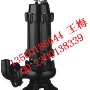台湾源立150口径潜污泵图片