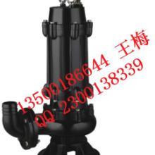供应山东排污泵 山东排污泵优质供应商价格