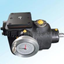 用于发泡机的A2VK计量泵,齿轮泵,高压柱塞泵价格,生产厂家