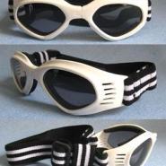 可调节宠物眼镜狗眼镜图片