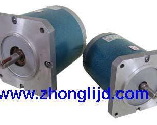 纠偏机TDY低速永磁同步电机图片
