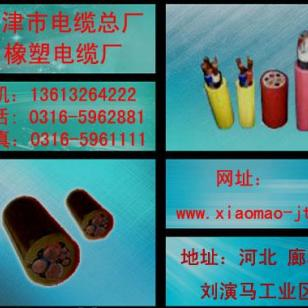 PVC护套屏蔽控制软电缆图片