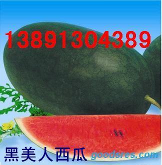 供应生鲜水果-陕西黑无籽基地/陕西花无籽西瓜基地/花皮西瓜花皮西 陕西大棚黑美人西瓜