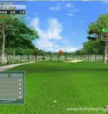 高尔夫球杆图片/高尔夫球杆样板图 (3)