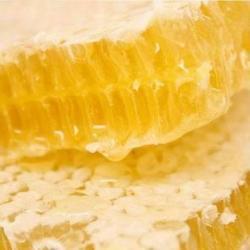 供應金蜂蜂巢蜜500g巢蜜格子蜜