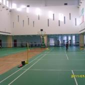 羽毛球场专用运动木地板