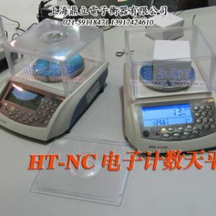 HT-300NC电子计数天平图片
