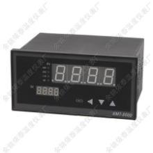 供应温度仪表总代理XMT-808