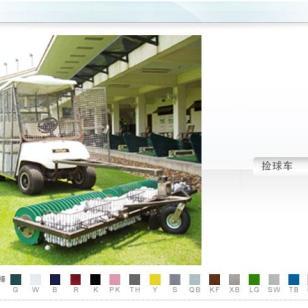 高尔夫捡球车电瓶高尔夫捡球车图片