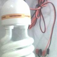 学生创业摆摊12V节能灯泡图片