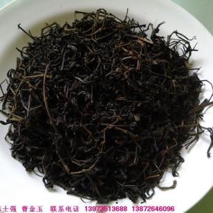 河南青钱柳茶图片