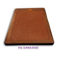 华晟温热电位治疗仪HS-DANA3000 华晟治疗仪治疗仪HSD