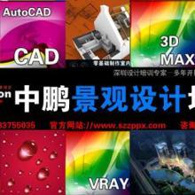 供应深圳景观设计培训景观CAD寒假培训批发