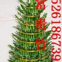 南京花卉种植/绿植租摆/园林绿化图片