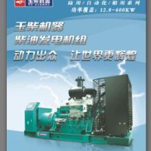供应贵州柴油发电机组