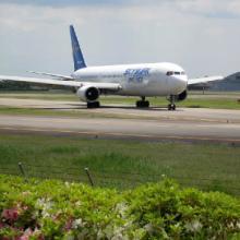 供应国内航空货运代理,机票预定,航空特快图片