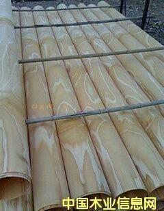 松木面皮单板图片