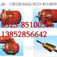 ZD系列锥形转子电动机图片