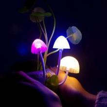 供应蘑菇灯陶瓷树脂LED夜灯生日礼物