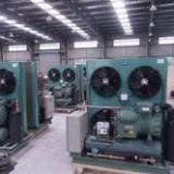 沈阳大东区工业制冷设备维修-沈阳和平区工业制冷设备维修