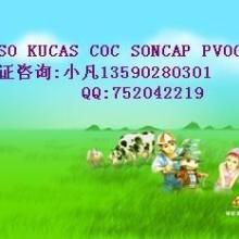 供应SONCAP认证,SONCAP证书申请,SONCAP清关证书批发