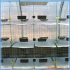供应鸽笼兔笼肉鸽养殖笼价格山东笼具厂订做鸽笼兔笼笼门鸽子兔子笼子批发