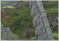 广西RXI100被动拦石网厂家