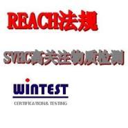 东莞REACH认证图片