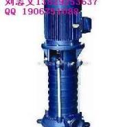 立式多级消防稳压泵制造商图片