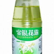 金银花露饮料瓶生产厂家出厂价格图片
