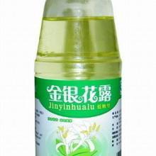 安陆金银花露饮料瓶生产厂家出厂价批发