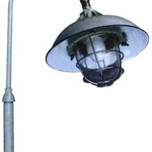 供应适用石化装置、石油平台、加油站、油泵房BPD防爆平台灯 图片