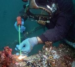 咸阳水下清淤水下清理垃圾水下救助图片/咸阳水下清淤水下清理垃圾水下救助样板图