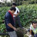 无锡疏通市政排水排污管道厂家图片