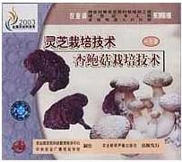 供应杏鲍菇生产的基本要求及相关设备