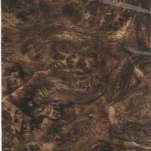 供应汽车控制盘的木纹水转印加工生产A015图片