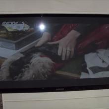 供应渝北江北液晶电视安装拆装公司,品牌电视专业拆装安装提供电视支架图片