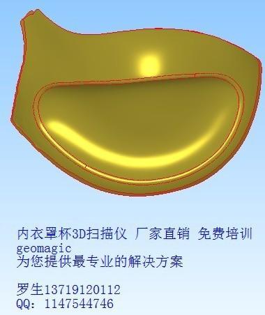 内衣扫描仪_内衣3D扫描仪鞋子鞋模三维扫描仪仪器仪表
