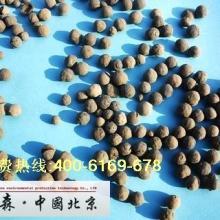 供应北京园林陶粒页岩陶粒粘土陶粒图片