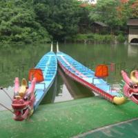 供应龙舟 璃钢龙舟 标准龙舟 龙舟制造商 水上龙舟 玻璃钢龙舟
