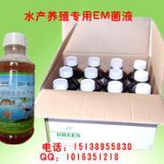 江苏无锡泰州水产专用em菌种菌液图片