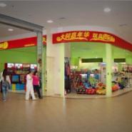 春节卖什么最有利润 大树益智玩具加盟 儿童玩具热卖产品