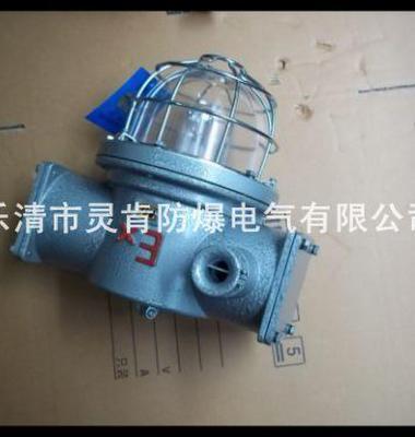 隔爆防水高压钠灯图片/隔爆防水高压钠灯样板图 (4)