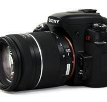 全新数码相机,正品保证,三包服务(诚招代理)批发