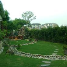 供应冬季园林绿化养护管理,上海冬季l园林绿化养护工作批发