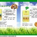 天津河西zp广告宣传彩页图片