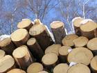 供应木材进口报关-清关图片