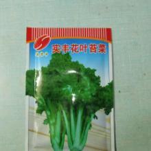 供应实丰花叶苔菜种子批发