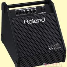 供应罗兰ROLANDPM-10电鼓专业音箱图片